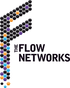 The Flow Networks